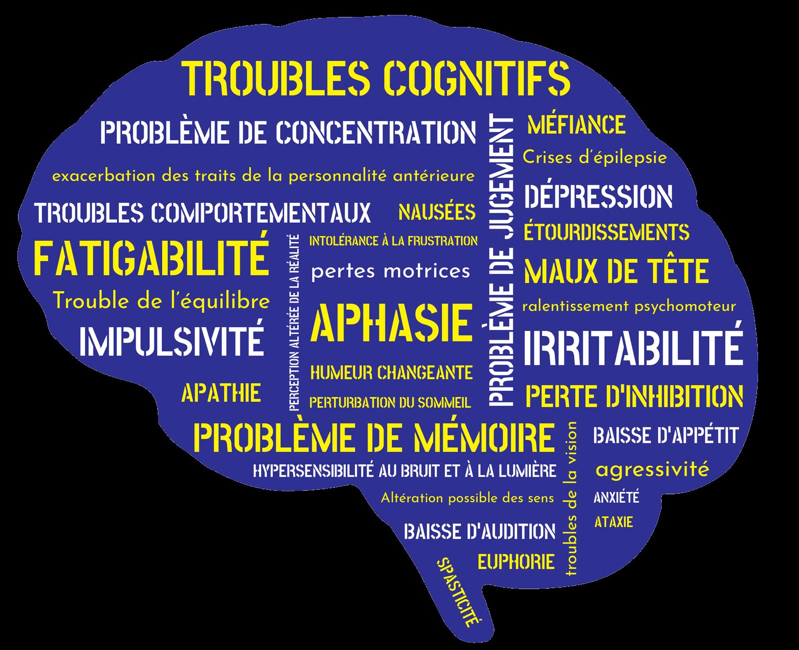 Séquelles d'un TCC sur le cerveau - Connexion >TCC.QC