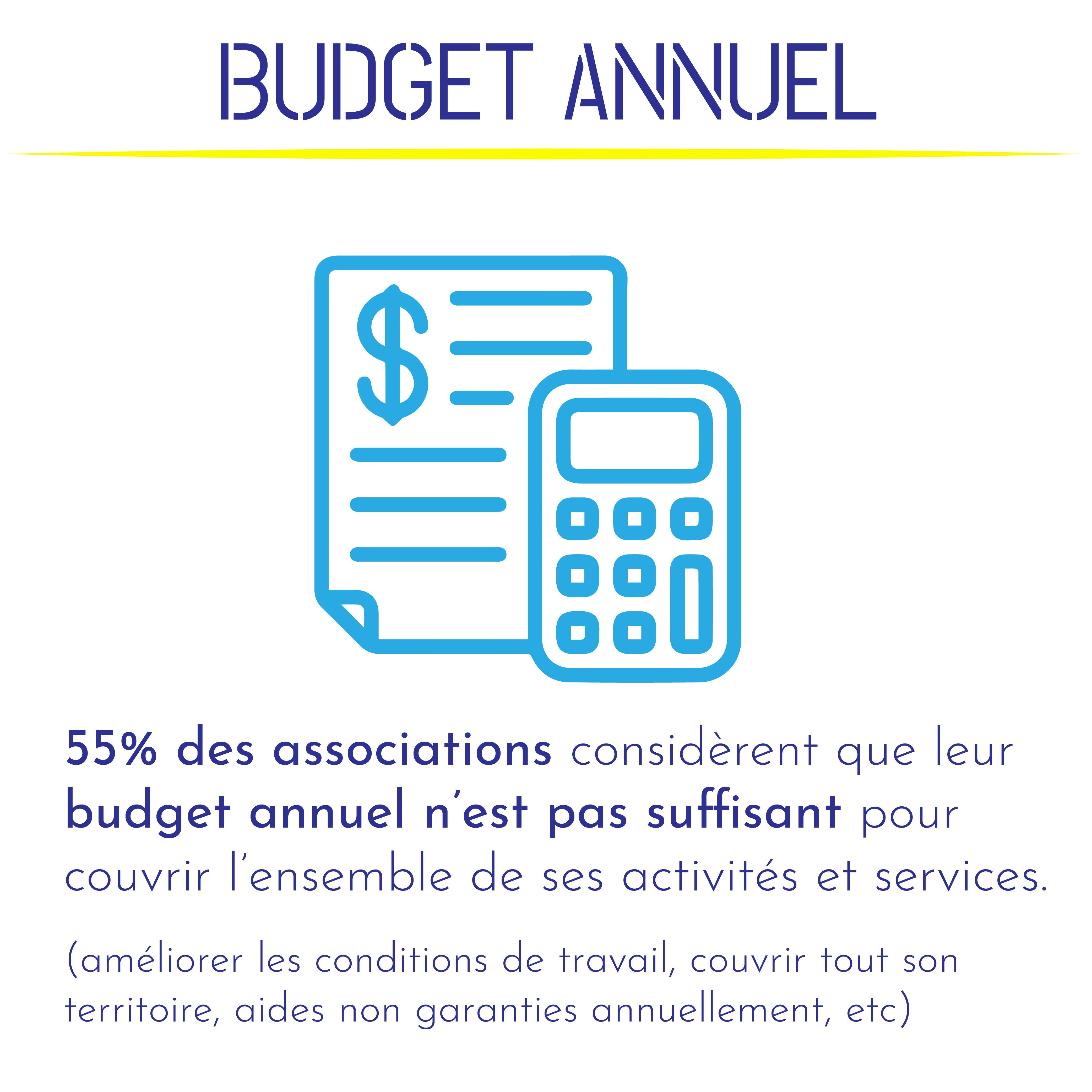 55% des associations considèrent que leur budget annuel n'est pas suffisant pour couvrir l'ensemble de ses activités et services. (améliorer les conditions de travail, couvrir tout son territoire, aides non garanties annuellement, etc).